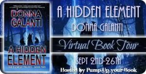 A-Hidden-Element-banner